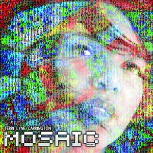 Image for 'The Mosaic Project'