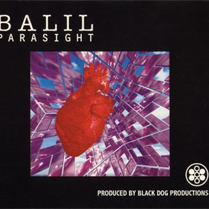 Image for 'Parasight'