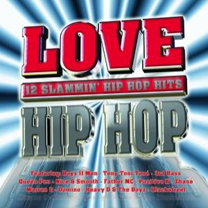 Image pour 'Love Hip Hop'