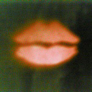 Image for 'Celebrity Over Night (Singl)'