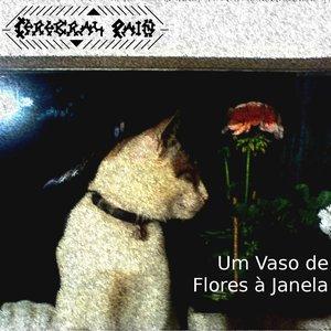 Image for 'UM JARRO DE FLORES À JANELA'
