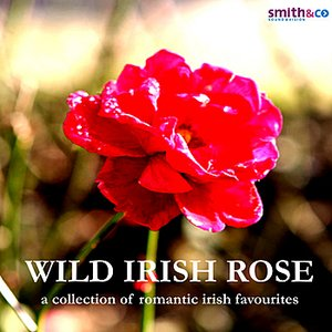 Image for 'Wild Irish Rose - A Collection of Romantic Irish Favourites'