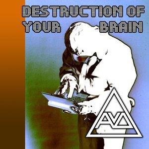 Image pour 'Destruction Of Your Brain [2010]'
