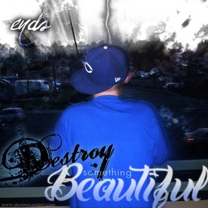 Image for 'Destroy Something Beautiful'