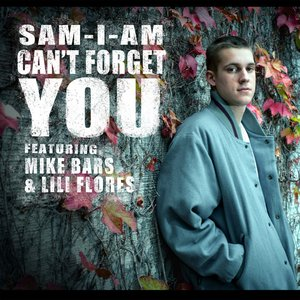 Image for 'Can't Forget You'