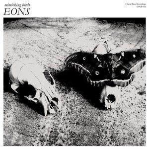 Image for 'EONS'