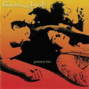 Bild für 'Contradiction - The Best Of The Hummingbirds'