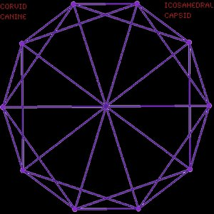 Image for 'Icosahedral Capsid'