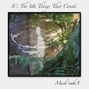 Image for 'It's The little Things That Count'