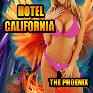 Image for 'Hotel California (Instr.  Radio Mix)'