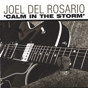 Image for 'Calm in the Storm'