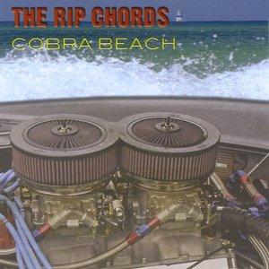 Image for 'Cobra Beach'