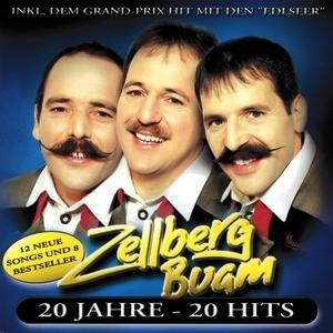 Bild für '20 Jahre - 20 Hits'