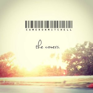 Image for 'The Covers'