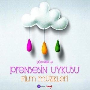 Image for 'Prensesin Uykusu'