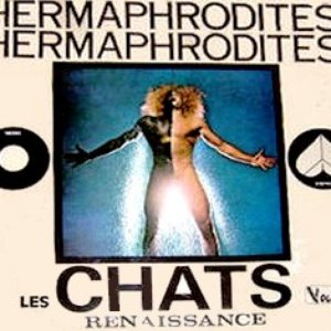 Image for 'Les Chats'