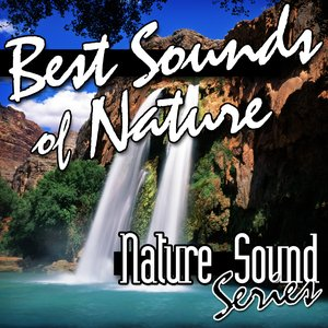 Image for 'Best Sounds of Nature'