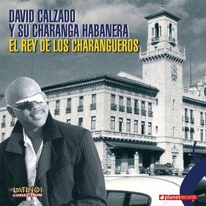 Image pour 'Chico Caramelo'
