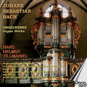 Image for 'Triosonate No. 3 D-Moll BWV 527: I. Andante'