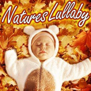 Imagem de 'Natural Night Time Lullaby'