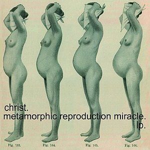 Image for 'Metamorphic Reproduction Miracle.'