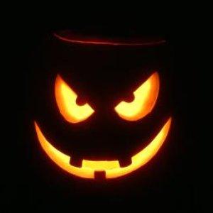 Bild för 'pumpkin jacket'