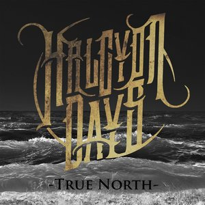 Image for 'True North'