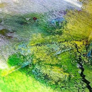 Image for 'Two Maps of Danaraja'