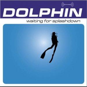 Image pour 'Waiting for Splashdown'