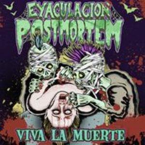 Image for 'Viva la Muerte'
