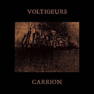 Imagen de 'Carrion'