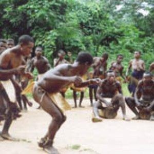 Bild för 'Aka Pygmies'