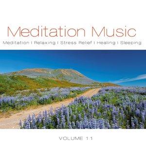 Image for 'Meditation Music, Vol. 11'