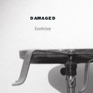 Image for 'Damaged'