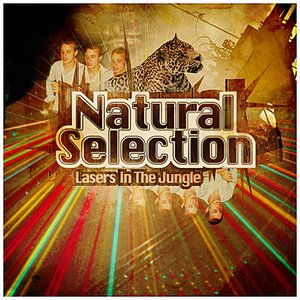 Image for 'Lasers In The Jungle'
