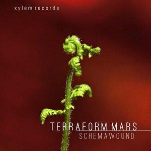 Image for 'Terraform Mars'
