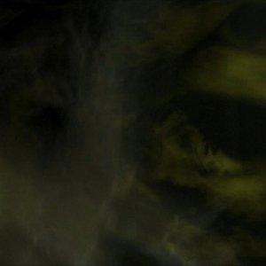 Imagem de 'Fungi From Yuggoth'