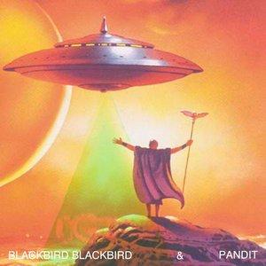 Image for 'Blackbird Blackbird & Pandit'