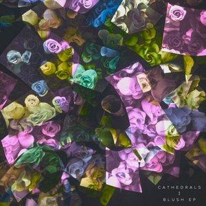 Image pour 'Blush EP'