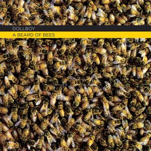 Image for 'A Beard of Bees'