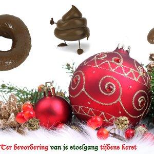 Image for 'Ter Bevordering Van Je Stoelgang Tijdens Kerst (Single)'