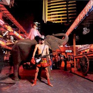 Image for 'Cowboy Bebop: Ask DNA'