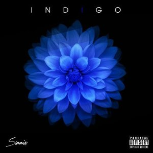 Image for 'Indigo'