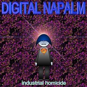 Image for 'Industrial Homicide'
