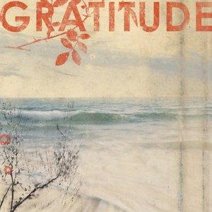 Image for 'Gratitude (U.S. Version)'