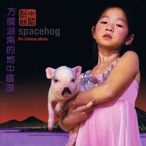 Image for 'The Chinese Album'
