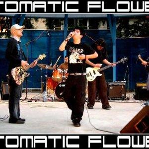 Bild för 'Automatic Flowers'