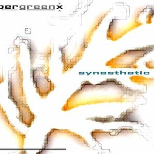 Image for 'Synesthetic 1.1'
