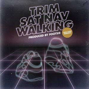Image for 'Sat Nav Walking'