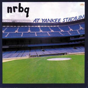 """At Yankee Stadium""的封面"